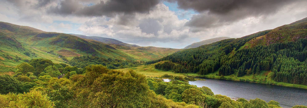 Galloway Forest Park in Schotland