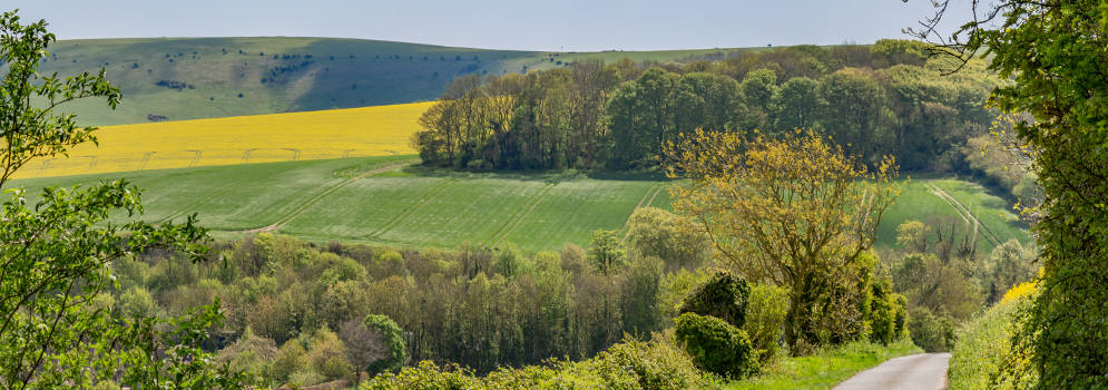 De South Downs in East Sussex