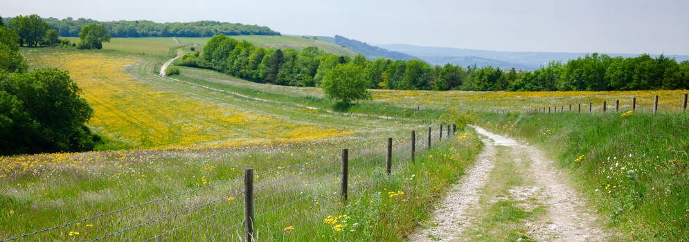 Het South Downs National Park in Zuid Engeland